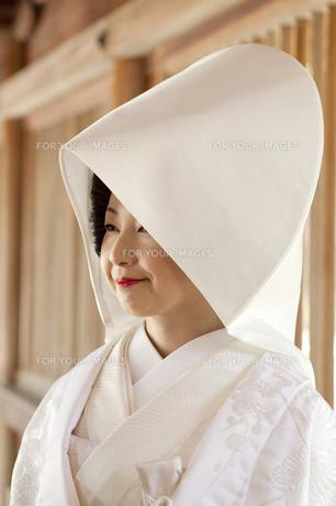 花嫁の写真素材 [FYI00460862]