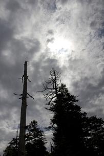山火事の写真素材 [FYI00460881]
