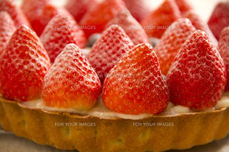 苺のタルトケーキの写真素材 [FYI00460903]