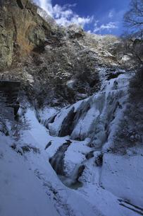雪化粧の氷瀑 袋田の滝 第1観瀑台(左端中央)を入れて撮影 吊橋付近から望むの写真素材 [FYI00461300]
