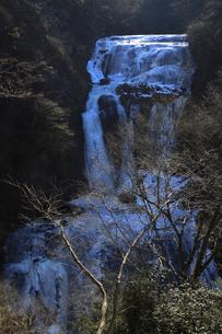 氷瀑 袋田の滝 第2観瀑台(新観瀑台)から望むの写真素材 [FYI00461303]