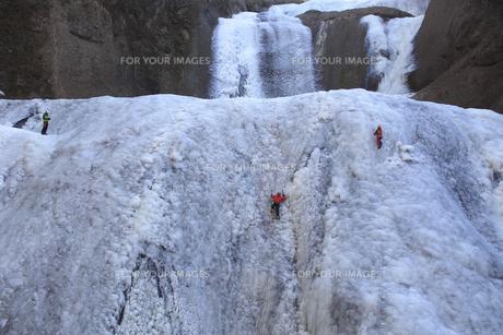 滝登り 雄大な袋田の滝 アイスクライミング その氷壁を登るの写真素材 [FYI00461329]
