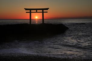 神々しい 神磯の鳥居 初日の出の写真素材 [FYI00461419]
