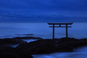夜明け前の静寂 神磯の鳥居 神秘的ブルーアワーの写真素材 [FYI00461423]