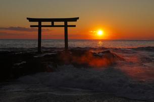 神々しい 神磯の鳥居 初日の出の写真素材 [FYI00461429]