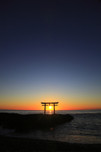 神々しい 神磯の鳥居 初日の出の写真素材 [FYI00461431]