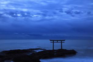 夜明け前の静寂 神磯の鳥居 神秘的ブルーアワーの写真素材 [FYI00461433]
