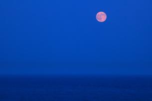 海の水平線から昇る 満月 実写の写真素材 [FYI00461457]
