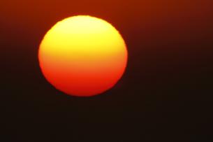 太陽とコロナ 超望遠800mm による撮影 ノートリミングの写真素材 [FYI00461474]