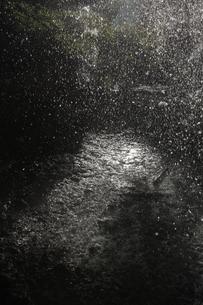 降雨イメージ 激しく降る雨粒と 光る水溜まりの写真素材 [FYI00461476]
