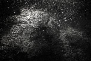 降雨イメージ 激しく降る雨粒と 光る水溜まりの写真素材 [FYI00461487]