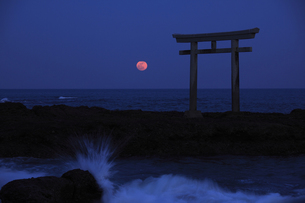 神磯の鳥居 海の水平線から昇る満月 実写の写真素材 [FYI00461489]
