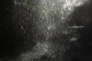 降雨イメージ 激しく降る雨粒と 光る水溜まりの写真素材 [FYI00461493]