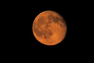 満月とクレーター 実写 超望遠800mm による撮影 ノートリミングの写真素材 [FYI00461498]