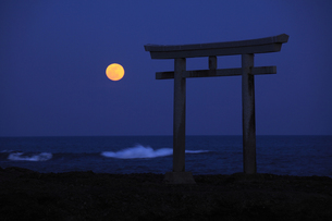 神磯の鳥居 海の水平線から昇る満月 実写の写真素材 [FYI00461505]