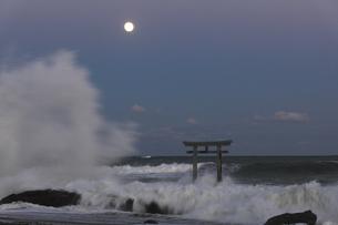 ザ・ブルーモーメント 神磯の鳥居 満月の夜 実写の写真素材 [FYI00461509]
