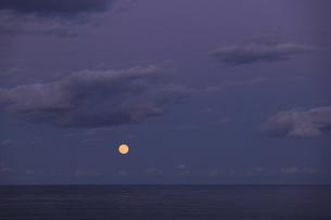 海の水平線から昇る 満月 実写の写真素材 [FYI00461519]