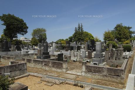 常磐共有墓地 :水戸黄門(徳川光圀)から家臣に賜った墓地。の写真素材 [FYI00461611]