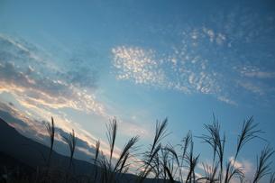 秋の空の素材 [FYI00461698]