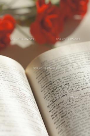 赤い花_感謝の写真素材 [FYI00461920]