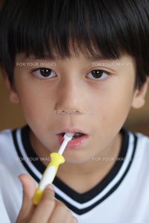 歯磨きをする幼児の写真素材 [FYI00461954]