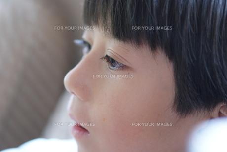 瞳の綺麗な子供の写真素材 [FYI00461960]