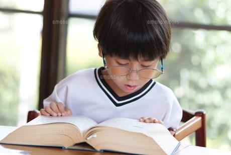本を読む子供の写真素材 [FYI00461976]