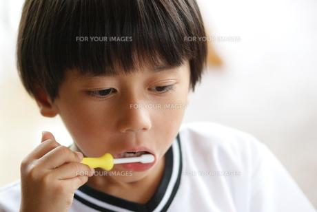 歯磨きをする子供の写真素材 [FYI00461979]