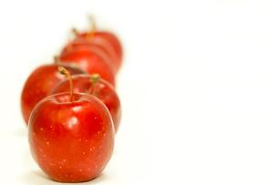 赤いりんごの写真素材 [FYI00462078]