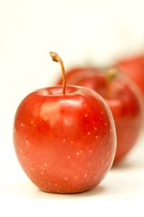 赤いりんごの写真素材 [FYI00462094]