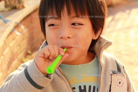 シャボン玉をする少年の素材 [FYI00462505]