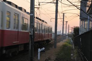夕陽に向かっての写真素材 [FYI00462800]