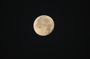 十三夜の素材 [FYI00462922]