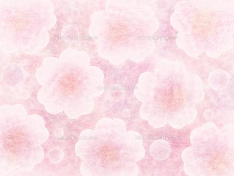 和紙な質感の桜パターンの写真素材 [FYI00464076]