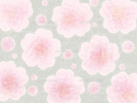 和紙な質感の桜パターンの素材 [FYI00464091]
