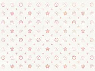 桜のモノグラム-和紙風の写真素材 [FYI00464113]