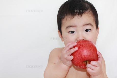 りんごと赤ちゃんの素材 [FYI00464122]