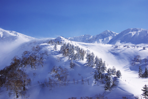 冬山の素材 [FYI00464336]