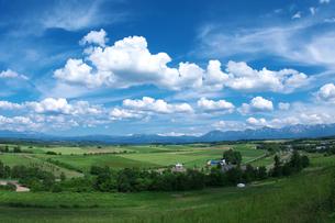 美瑛の丘と雲の素材 [FYI00464353]