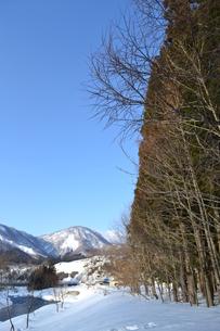 冬の晴れ間の写真素材 [FYI00464580]