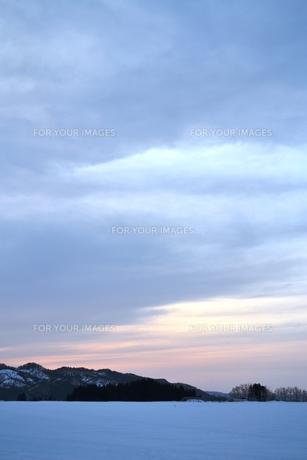 夕暮れの雪原の素材 [FYI00464679]