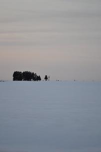 夕暮れの雪原の素材 [FYI00464689]