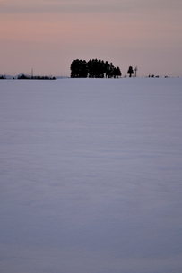 夕暮れの雪原の素材 [FYI00464690]
