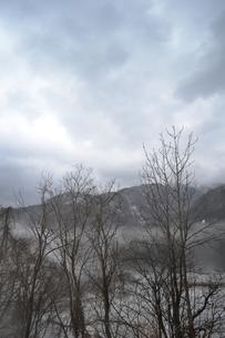 朝もやの風景の写真素材 [FYI00464807]