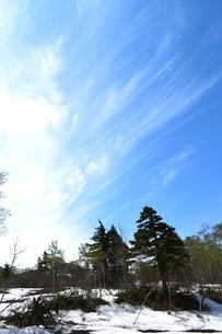 栗駒の残雪の写真素材 [FYI00464890]