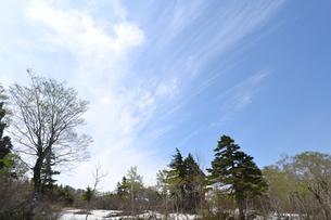 栗駒の残雪の写真素材 [FYI00464909]