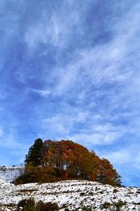 紅葉の丘と雪の写真素材 [FYI00465221]
