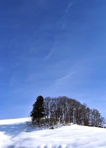 雪の丘の写真素材 [FYI00465237]