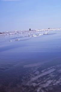 さざ波の視点からの写真素材 [FYI00465259]