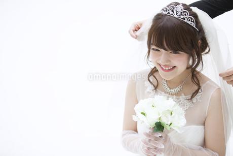 ブーケを持ち微笑む花嫁の写真素材 [FYI00465652]